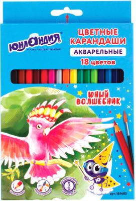 Набор акварельных карандашей Юнландия Юный волшебник / 181403