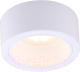 Светильник Arte Lamp Effetto A5553PL-1WH -