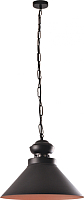 Потолочный светильник Vesta Light Loft 17331 (черный) -