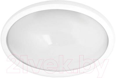 Светильник ЖКХ Camelion LBL-0212-NW C01 / 11443
