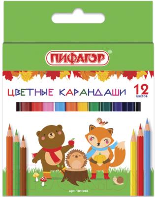 Набор цветных карандашей, 3 шт. Пифагор Малыши-Карандаши / 181344