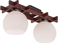 Потолочный светильник Citilux Нарита CL114121 -