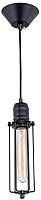 Потолочный светильник Citilux Эдисон CL450202 -