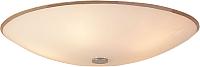Потолочный светильник Citilux Лайн CL911502 -