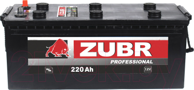 Автомобильный аккумулятор Zubr Professional болт R+