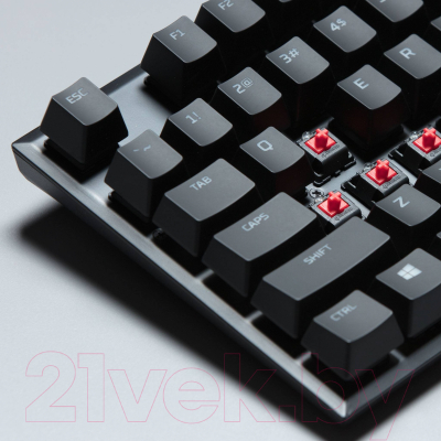 Клавиатура HyperX Alloy FPS Pro Cherry MX Red / HX-KB4RD1-RU/R1