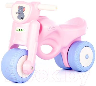 Каталка детская Полесье Мотоцикл. Мини-мото. Сафари / 90737