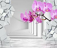 Фотообои Citydecor Орхидея 3D (300x254) -