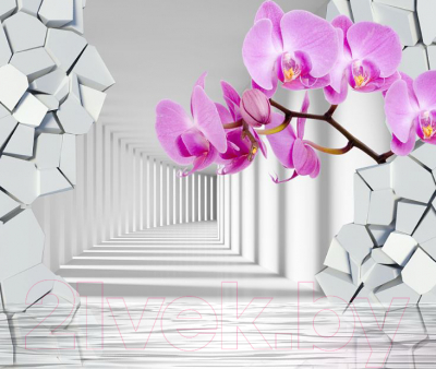Фотообои листовые Citydecor Орхидея 3D