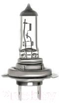 Автомобильная лампа Valeo Н7 / 032519