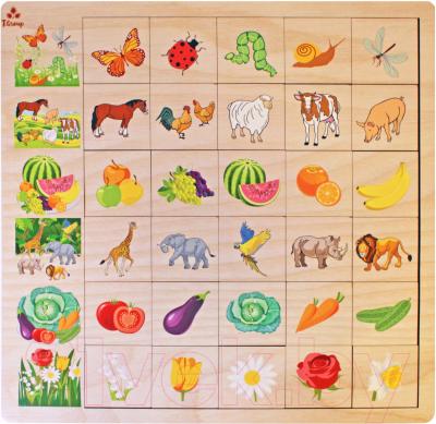 Развивающая игра Мастер игрушек Ассоциации. Природа / IG0151