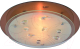 Потолочный светильник Arte Lamp Tiana A4043PL-2CC -