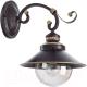 Бра Arte Lamp Grazioso A4577AP-1CK -