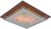 Потолочный светильник Arte Lamp Tiana A4042PL-2CC -