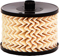 Топливный фильтр Purflux C489 -