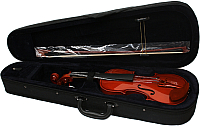 Скрипка Aileen VG-200 4/4 со смычком в футляре (натуральная) -