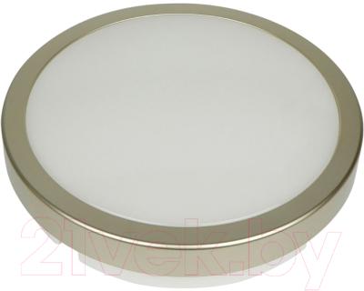 Светильник уличный Novotech Opal 357516