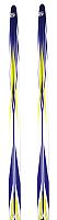 Лыжи беговые Atemi Arrow wax 200 (синий) -