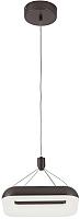 Потолочный светильник Citilux Паркер CL225215r -
