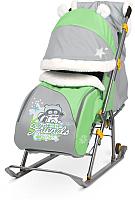 Санки-коляска Ника Детям 6 / НД6 (енот, зеленый/серый) -