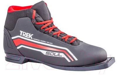 Ботинки для беговых лыж TREK Soul 2 (черный/красный, р-р 36)
