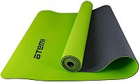 Коврик для йоги и фитнеса Atemi AYM01TPE (серый/зеленый) -