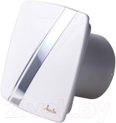 Вентилятор вытяжной Awenta System+ Turbo 100 / KWT100-PLB100