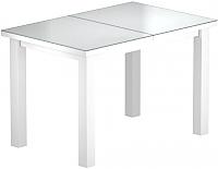 Обеденный стол Васанти Плюс ВС-22 120/160x80М (белый матовый) -
