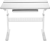 Парта Растущая мебель Picasso E201 -