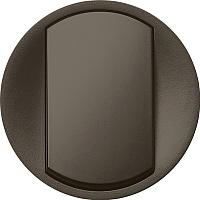 Лицевая панель для выключателя Legrand Celiane 67901 (графитовый) -