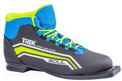 Ботинки для беговых лыж TREK Soul 6 NN75 (черный/лайм, р-р 38)