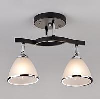 Потолочный светильник Евросвет Ontario 9612/2 (хром/венге) -