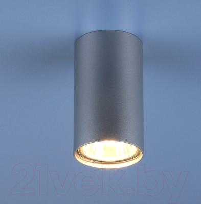 Точечный светильник Elektrostandard 1081 GU10 SL / 5257