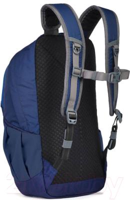 Рюкзак Pacsafe Venturesafe 60540639 (синий)