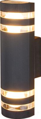 Светильник уличный Elektrostandard 1443 Techno (черный)