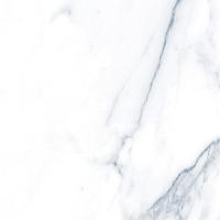 Плитка Гранитея Пайер серый PR (600x600) -