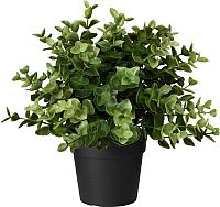 Искусственное растение Ikea Фейка 303.751.77 -
