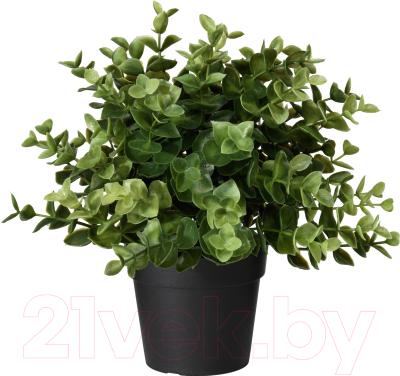 Искусственное растение Ikea Фейка 303.751.77
