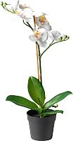 Искусственный цветок Ikea Фейка 403.719.61 -