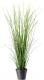 Искусственное растение Ikea Фейка 903.932.44 -