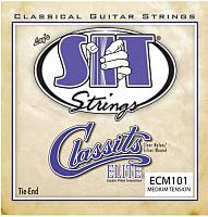 Струны для акустической гитары SIT Strings ECM101 -
