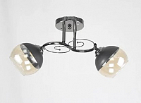 Потолочный светильник Mirastyle K-3363/2 BKPRL -