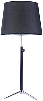 Прикроватная лампа Maytoni Monic MOD323-TL-01-B -