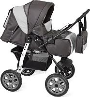 Детская универсальная коляска Smile Line Alf I (Al 05, темно-серый/светло-серый) -