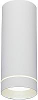 Точечный светильник Elektrostandard DLR022 12W 4200K (белый матовый) -