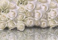 Фотообои Citydecor Розы с каплями росы (200x140) -