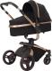 Детская универсальная коляска Rant Nest 3 в 1 / RA891 (черный) -