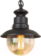 Светильник уличный Elektrostandard Talli H GL 3002H (черный) -