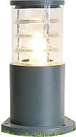 Светильник уличный Elektrostandard 1508 Techno (серый) -