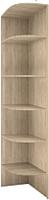Угловое окончание для шкафа Рэйгрупп Elgon / SY.01 (сосна натуральная) -